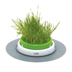 Jardin d'herbe CATIT Senses 2.0