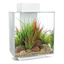 Aquarium FLUVAL Edge 46L Blanc