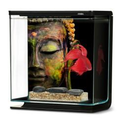 Aquarium MARINA Betta Kit 3L Bouddha