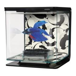 MARINA Betta Kit 2L Yin Yang - Aquarium pour combattant