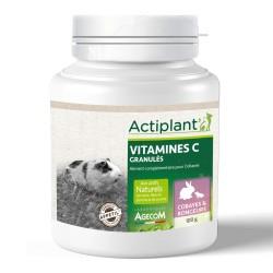 ACTIPLANT Vitamines C granulés 100 g pour cobayes et rongeurs